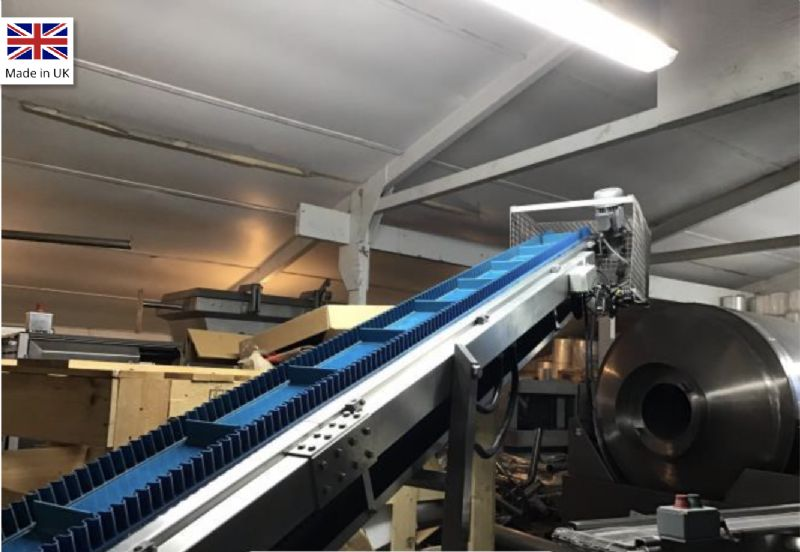 DWS Incline Conveyor at Food Machinery Auctions